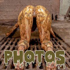 Photos Women