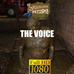 The voice in the cowshed