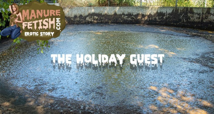 The Holiday Guest